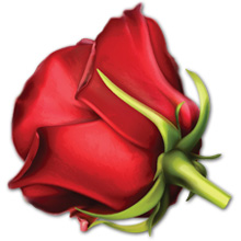 Iconized, illustrated red rosebud with green stem